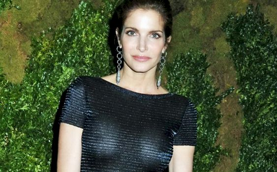 Sorry, stephanie seymour see through dress