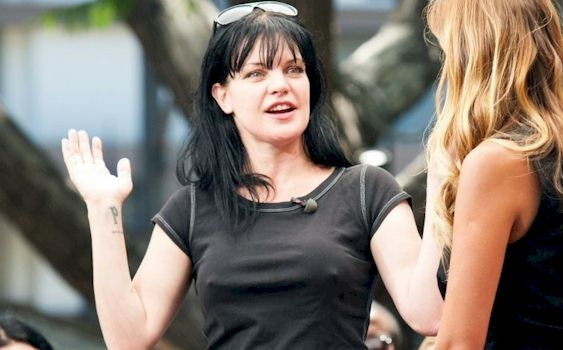 Not leave! Pauley perrette hot sexy nude photos try