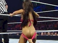 WWE Diva Rosa Mendes Ass Flash!